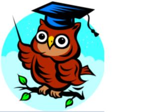 owl-300-225