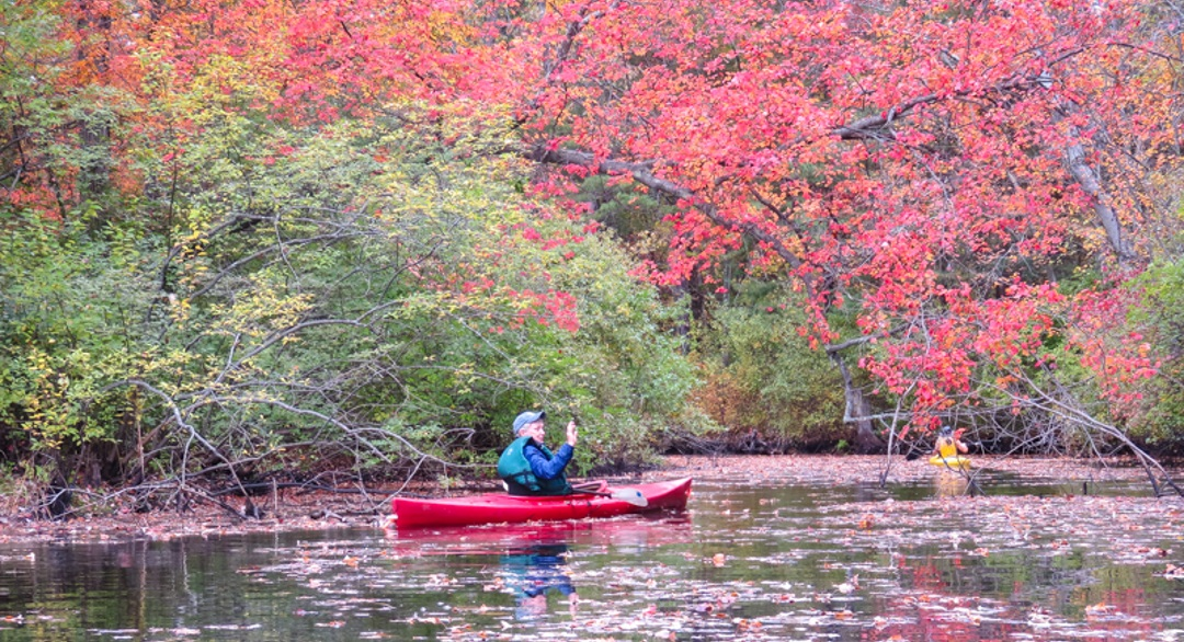LATE OCTOBER ON THE IPSWICH RIVER