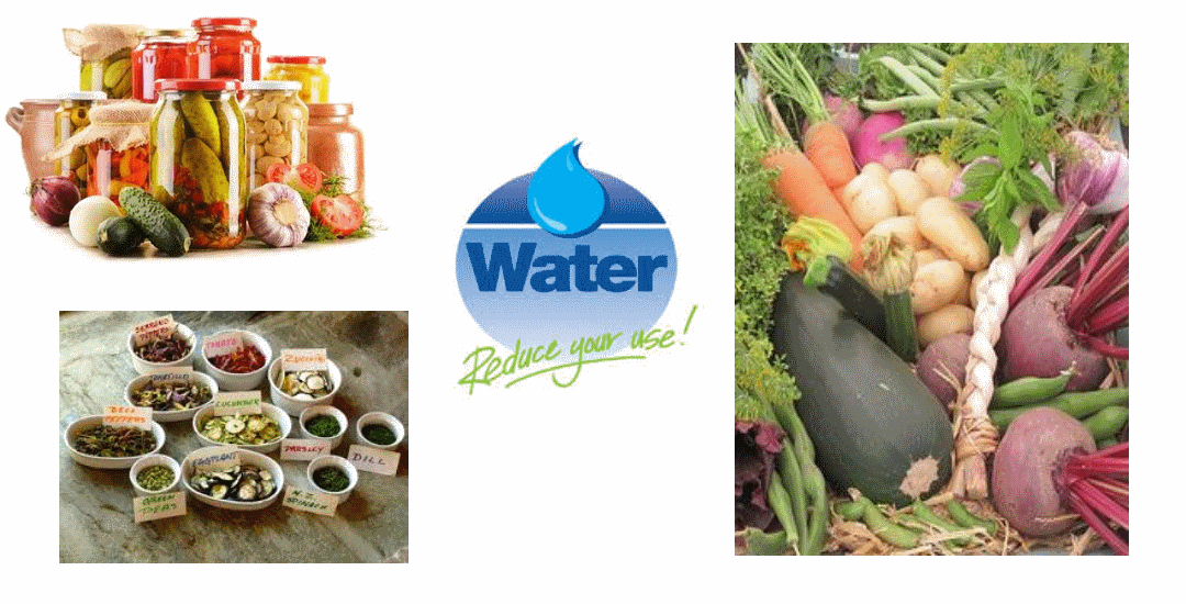 The Food and Water Connection,   May 16th